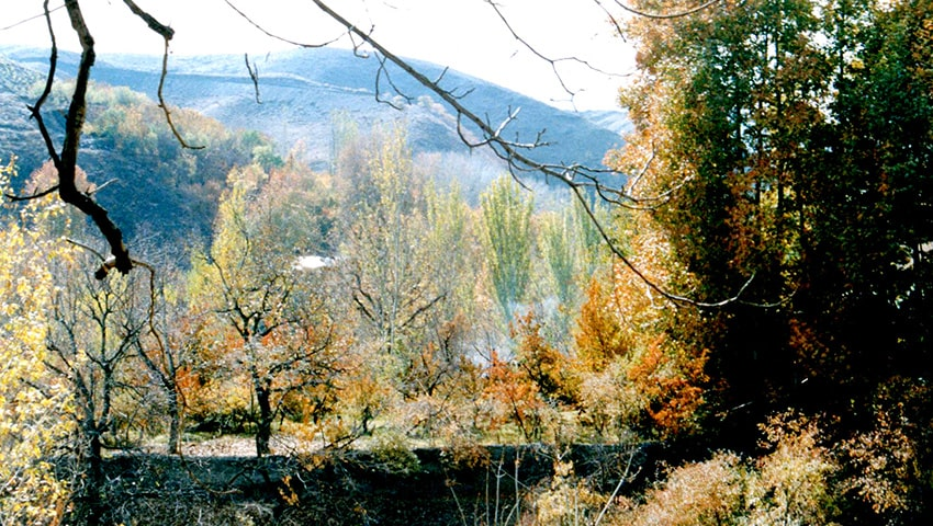 جاهای دیدنی مشهد، روستای ابرده