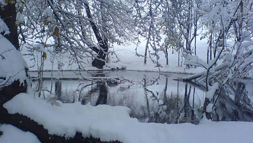نمای از زمستان مشهد