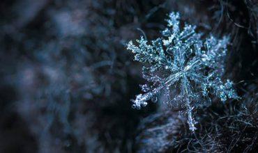 تصویری از زمستان