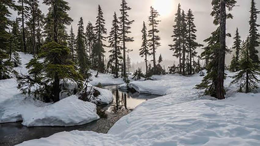طرقبه در زمستان