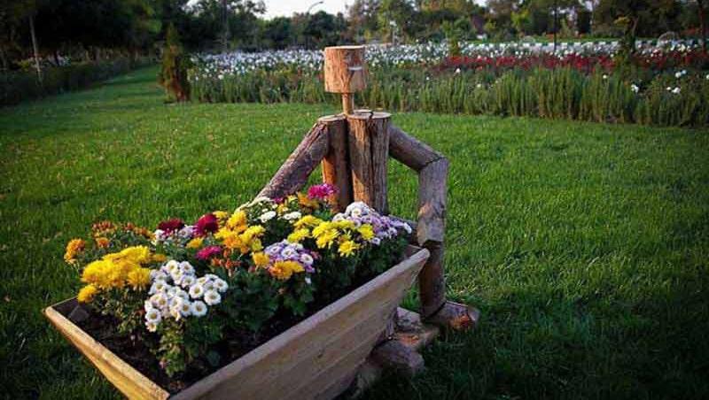 بهترین باغ گیاهشناسی ایران در مشهد