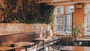عکسی از کافه های مشهد در پاییز