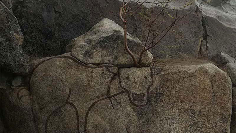 باغ وحش کوهسنگی مشهد