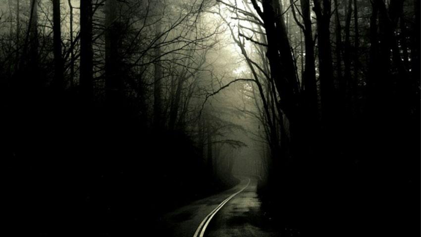 صدای جنگل جیغ در مشهد