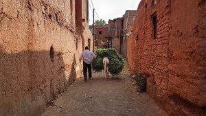 کوچه های روستای دهسرخ مشهد