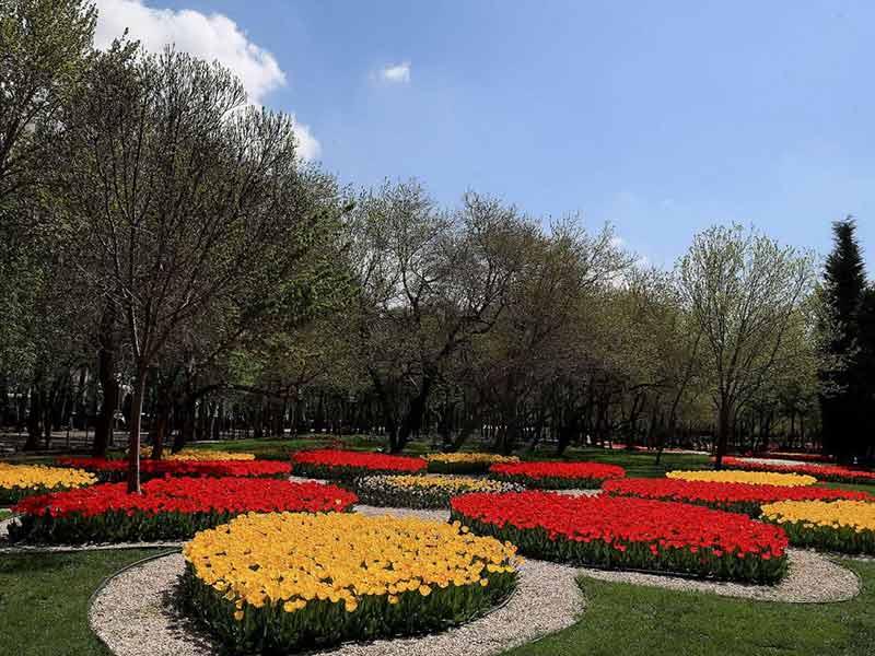 باغ رز پارک ملت مشهد، پارک اختصاصی بانوان